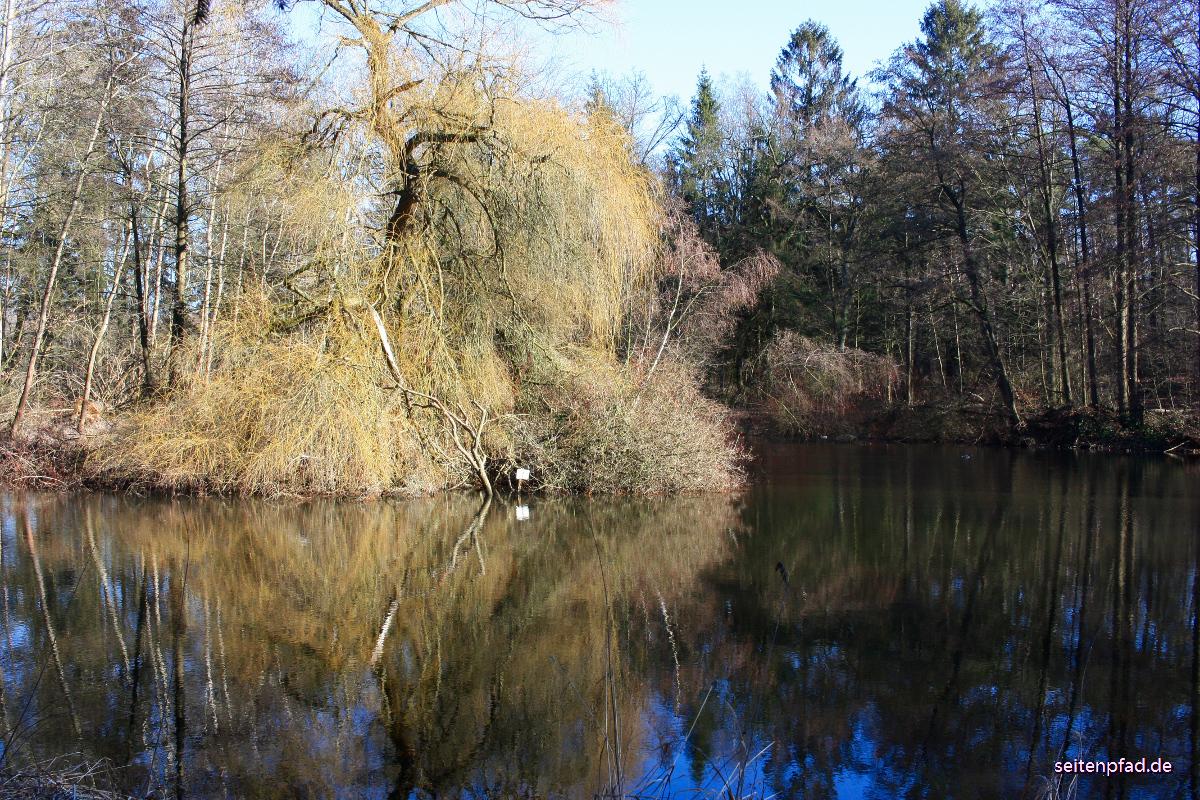 14. Februar 2019 An einem Teich bei Vögelsen