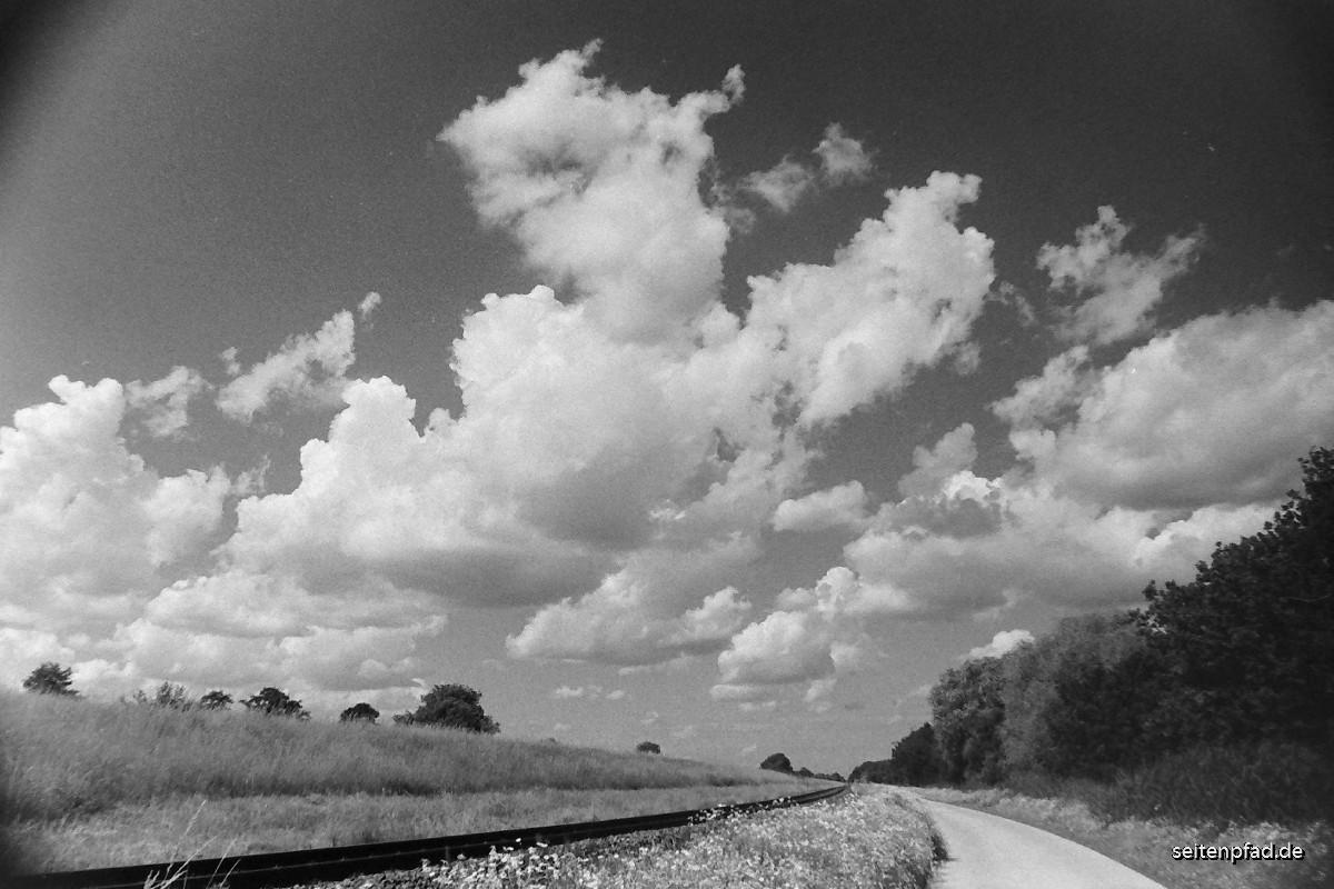 Straße  am Ilmenaudeich in Richtung Fahrenholz. Der Rand der Straße war  beidseitig auf einer Länge von mehreren hundert Metern mit üppig  blühender Kamille bewachsen. Siehe nachfolgendes Foto.