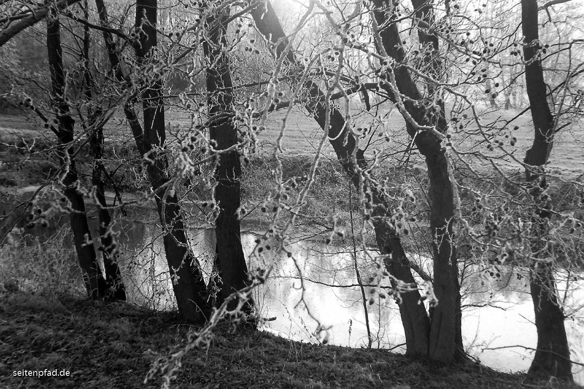 Im Winter am Neetzekanal/Ilmenau bei St. Dionys, IIlford HP5 Plus, entwickelt in Emofin,