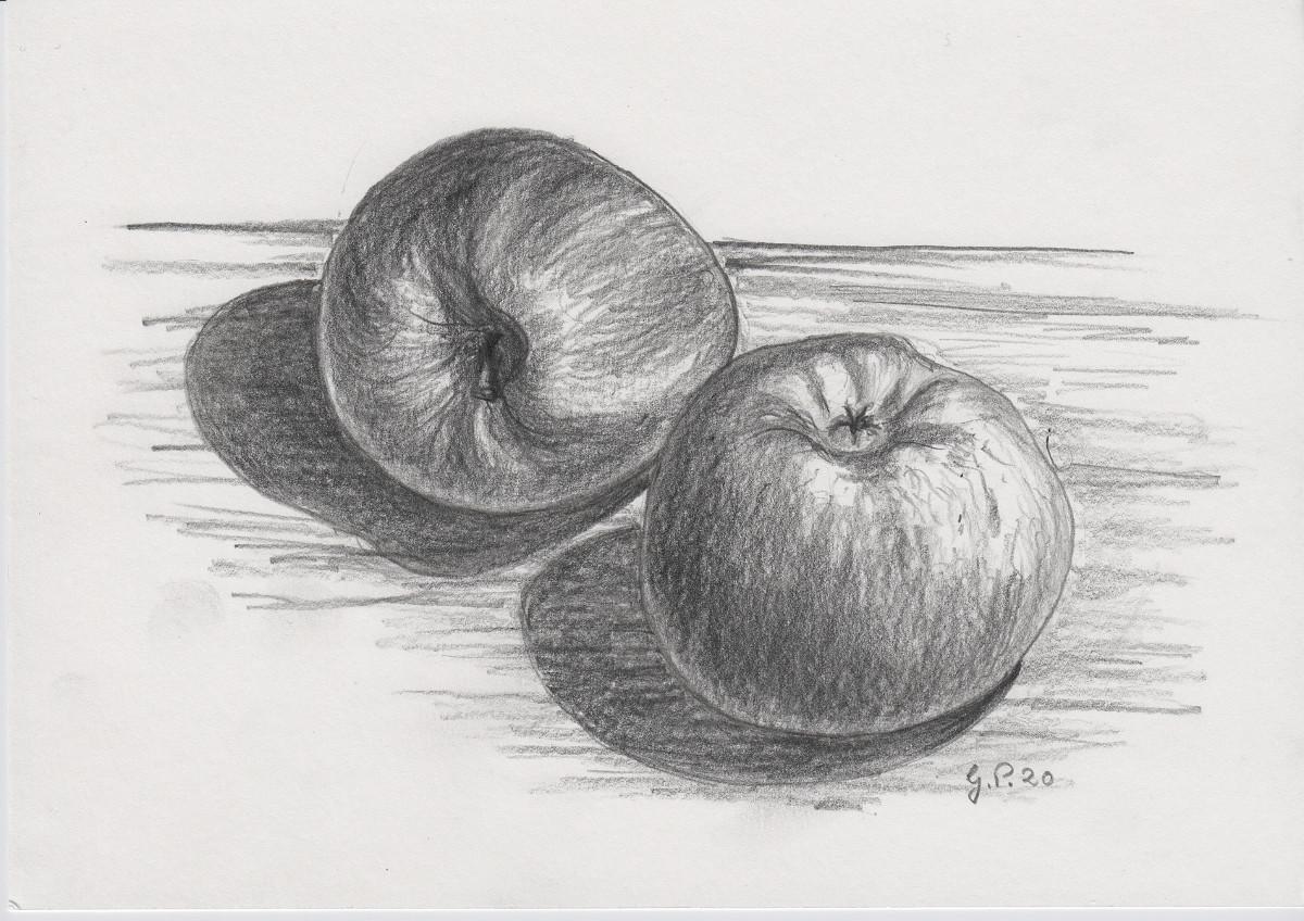 Zwei Äpfel, Zeichnung mit Bleistift 2B DIN A 5