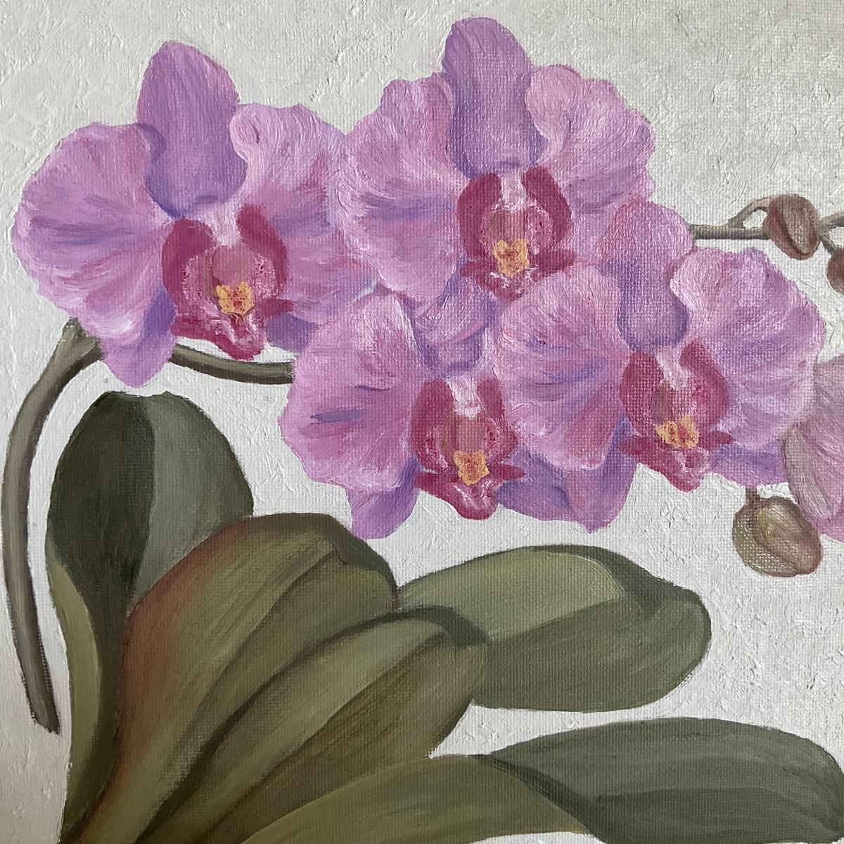 Orchideenblüten hellviolett 2021, Ausschnitt