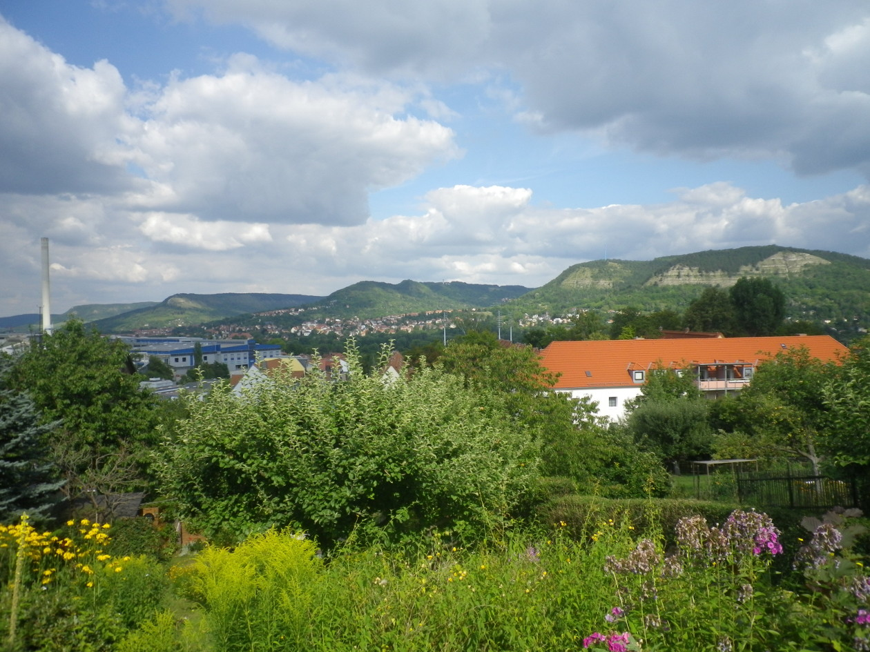 Blick von der Terrasse aus