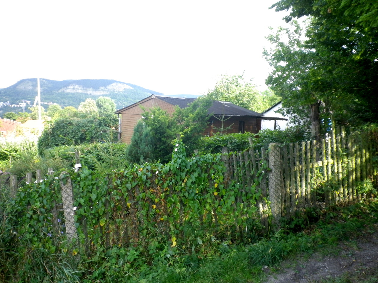 Laube vom Lauensteinweg aus- im Vordergrund das Nachbargrundstück