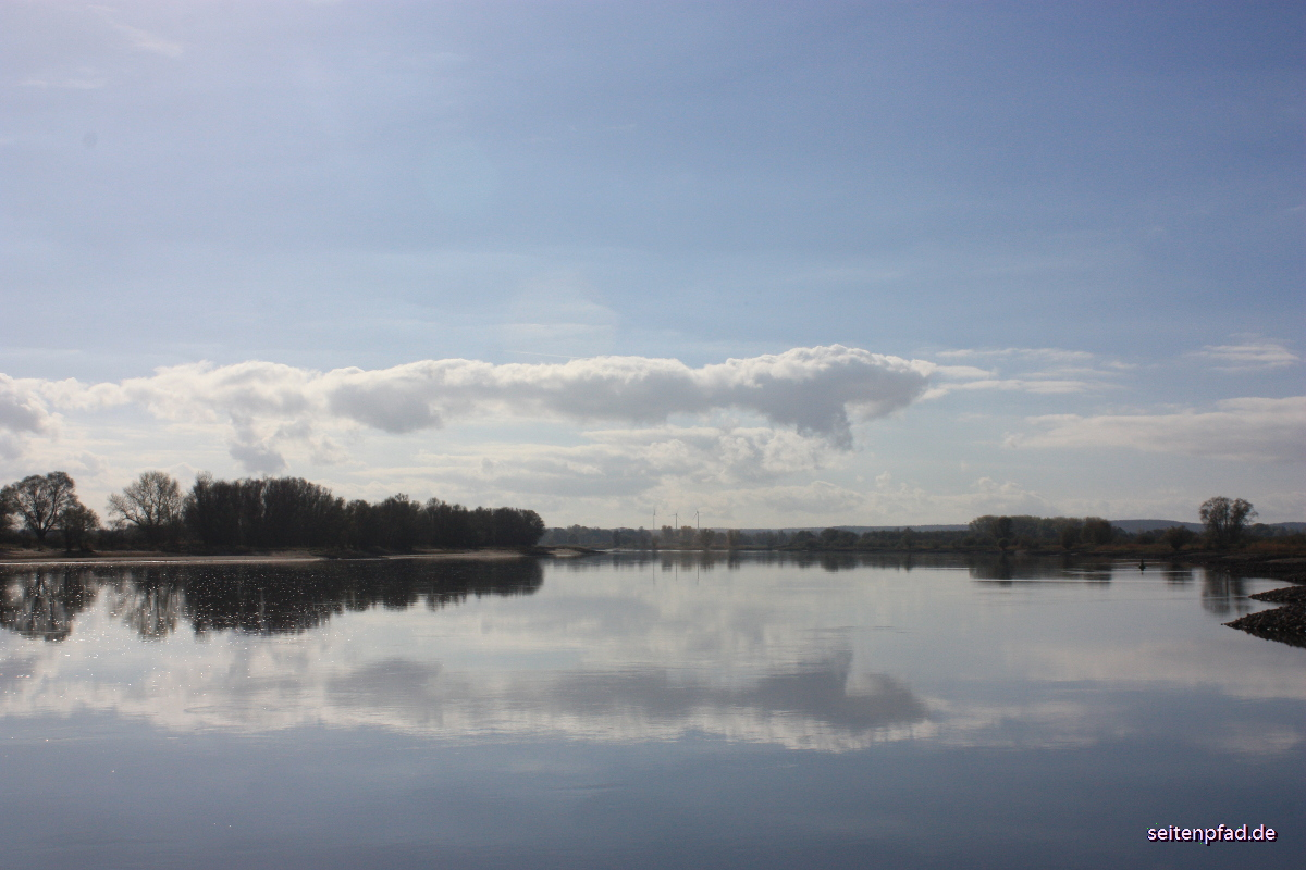 Die Elbe beim Heisterbusch im Gegenlicht in Richtung Bleckede