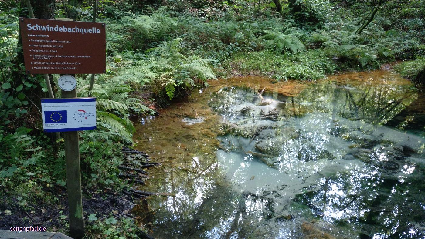 In der Schwindebecker Heide: die Schwindebachquelle